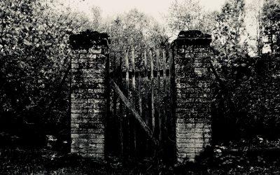 4 mai 2020 – Rémi Checchetto – Porte 16