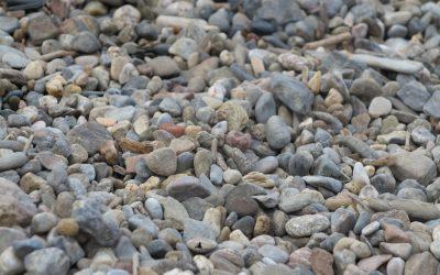 20 avril 2020 – Lucie Taïeb – une pierre